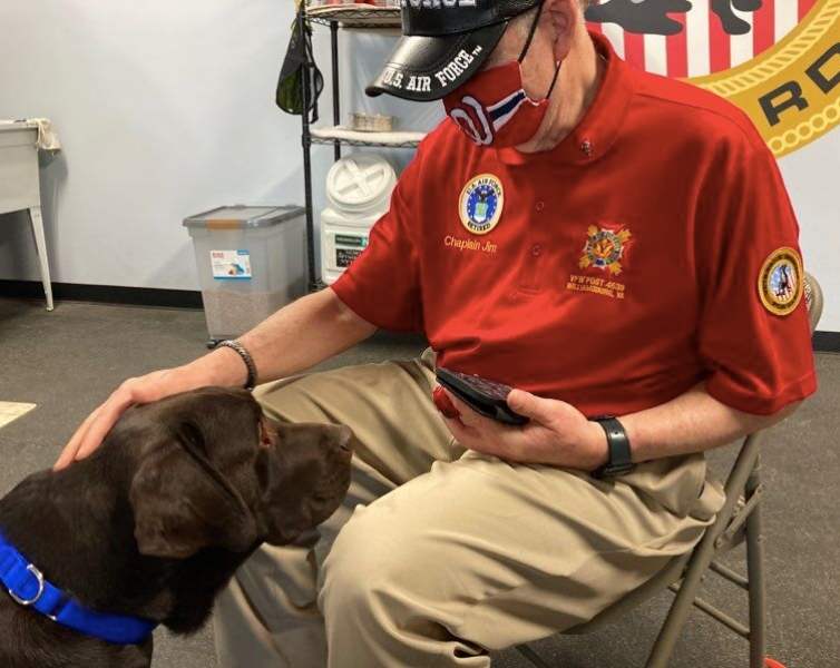 Veterans turn to service dogs